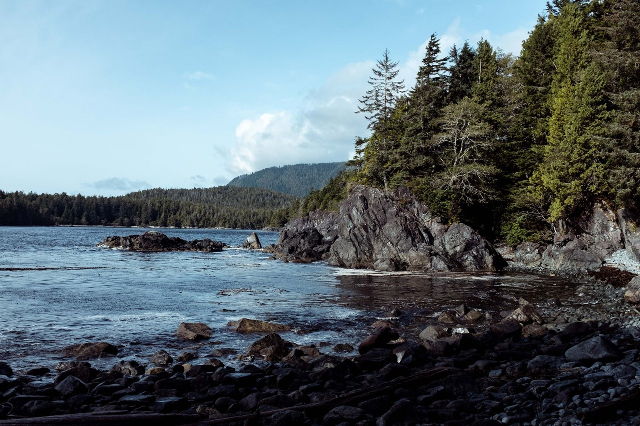 """Picture for article """"Vancouver Island Tourism"""""""