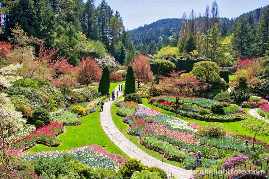 Image source:https://visitorinvictoria.ca/5-great-gardens-around-victoria/