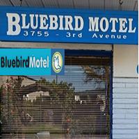 Bluebird Motel logo