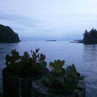 Clayoquot Island Preserve logo