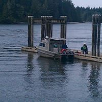 Cougar Island Water Taxi logo
