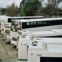 BC Transit logo