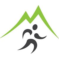 Dynamic Spine Sport & Wellness logo