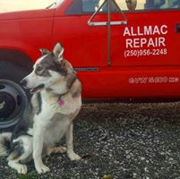 Allmac Repair logo