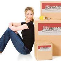 Willow Mini Storage logo