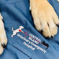 Central Island Veterinary Emergency Hospital logo