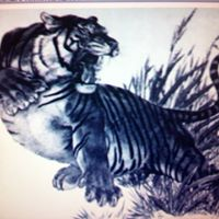 Silver Tiger Tattoo logo
