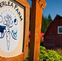 Alderlea Farm & Cafe logo