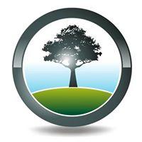 Black Tree Developments Ltd logo