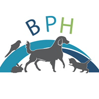 Beacon Pet Hospital logo