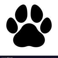 Sooke Veterinary Hospital logo