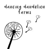 Dancing Dandelion Farms logo