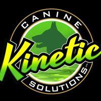 Kinetic K9 logo