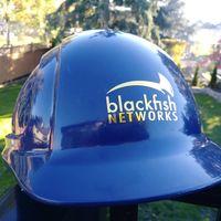 Blackfish Networks logo