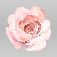 Petals Plus Floral Design logo