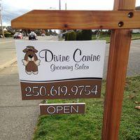 Divine Canine Grooming Salon logo