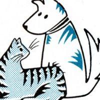 Nanaimo Veterinary Hospital logo