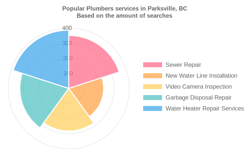 Popular services provided by plumbers in Parksville, BC