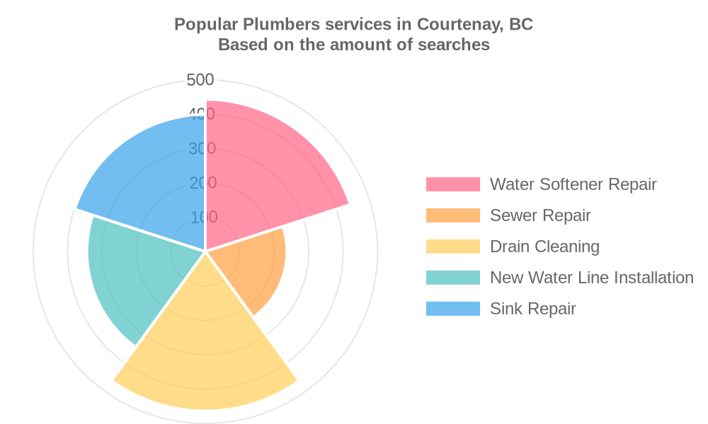 Popular services provided by plumbers in Courtenay, BC