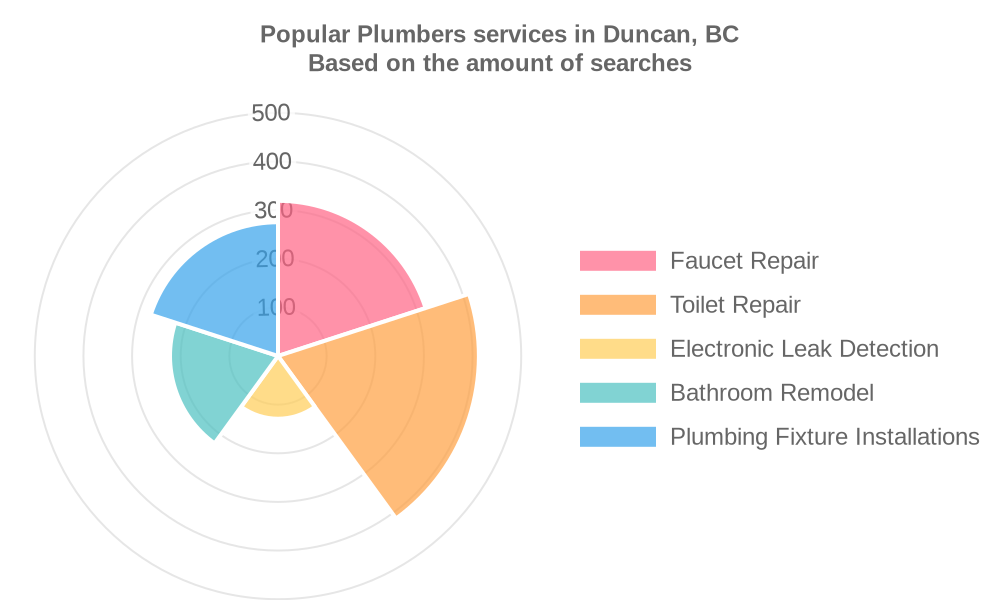 Popular services provided by plumbers in Duncan, BC