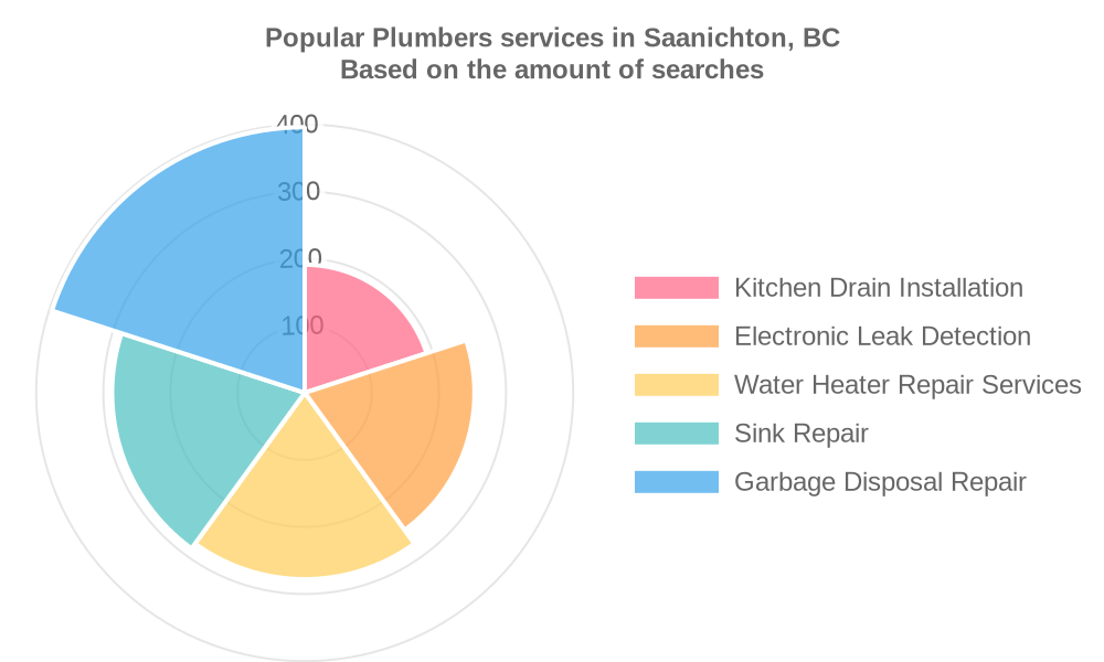 Popular services provided by plumbers in Saanichton, BC