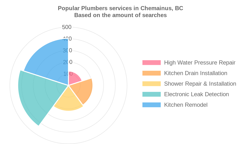 Popular services provided by plumbers in Chemainus, BC