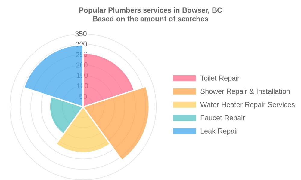 Popular services provided by plumbers in Bowser, BC