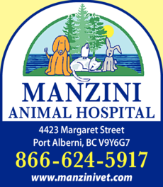 Print Ad of Manzini Animal Hospital