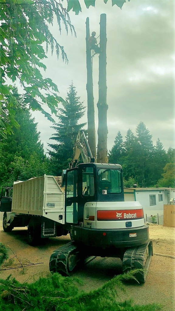 Photo uploaded by Competition Tree Service