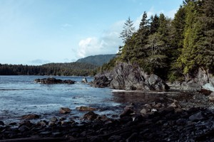 "Picture for article ""Vancouver Island Tourism"""