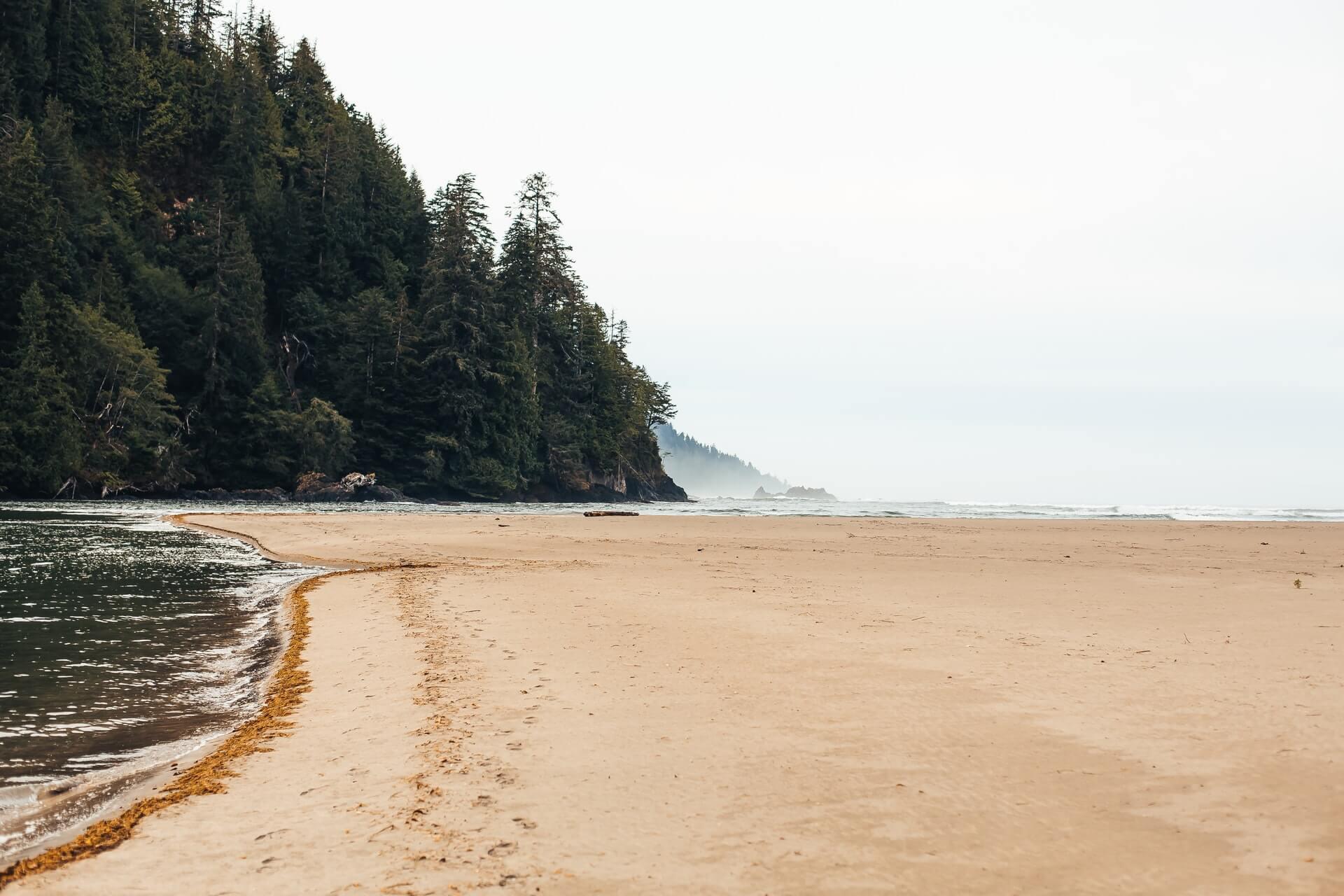 Vancouver Island Landscape