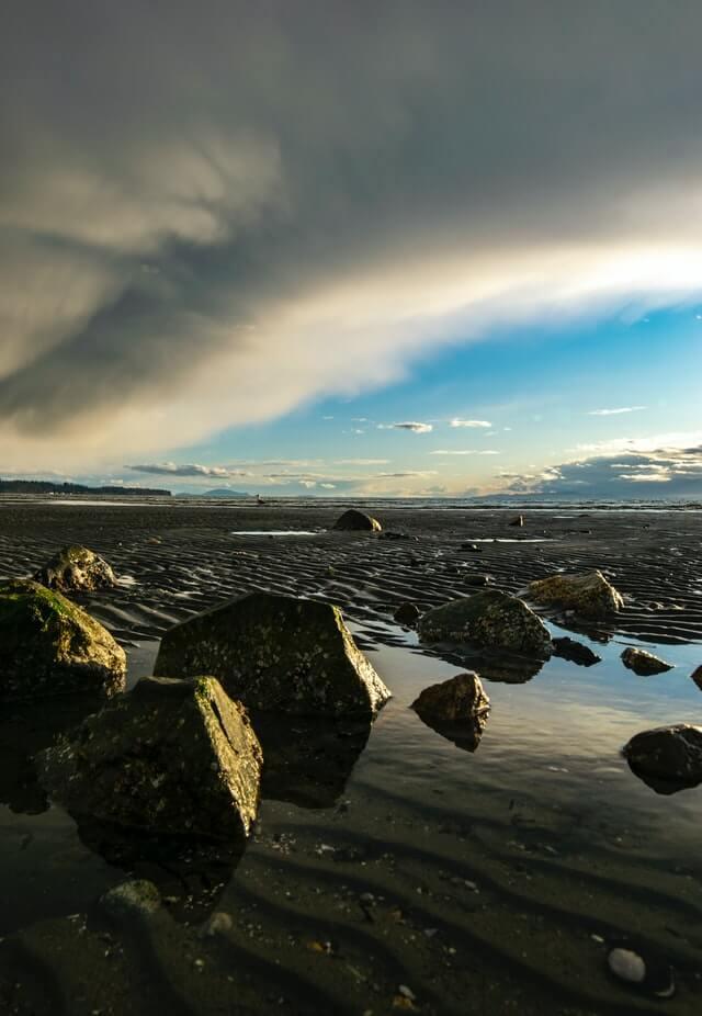 Landscape near Parksville, BC